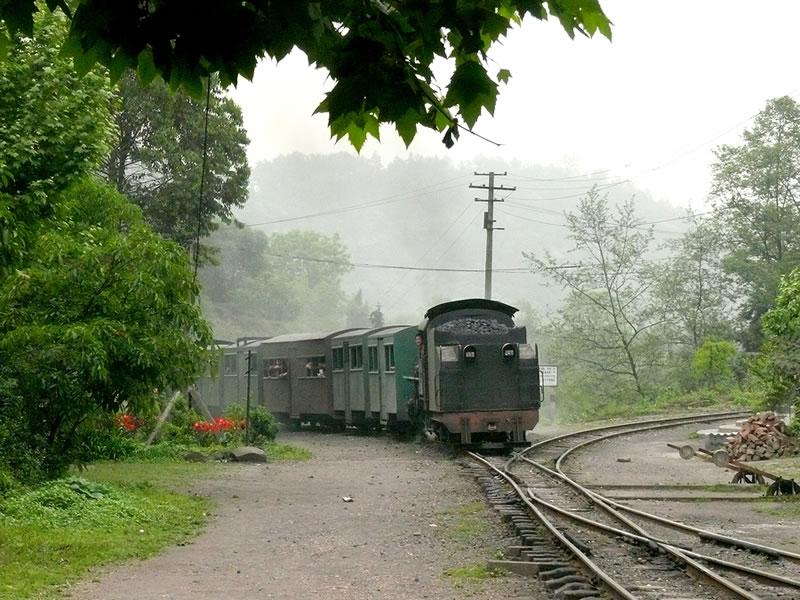 対向列車到着 対向列車到着 そして出て行きました。  中国最後の軽便SL鉄道